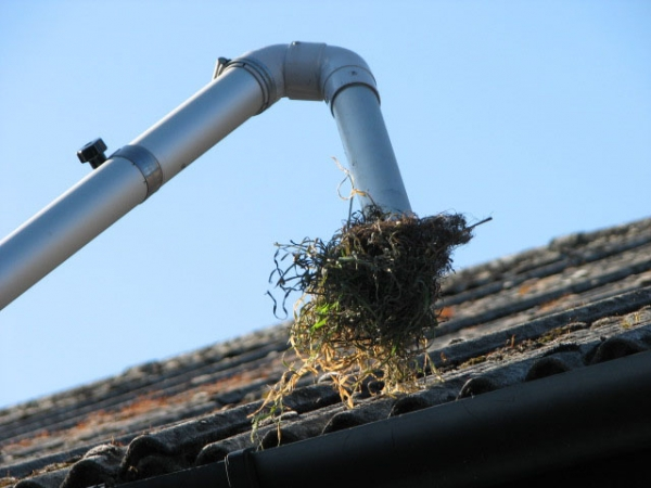 Our gutter cleaning system uses the latest technology to ensure that ...