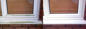 total_window_cleaning_services